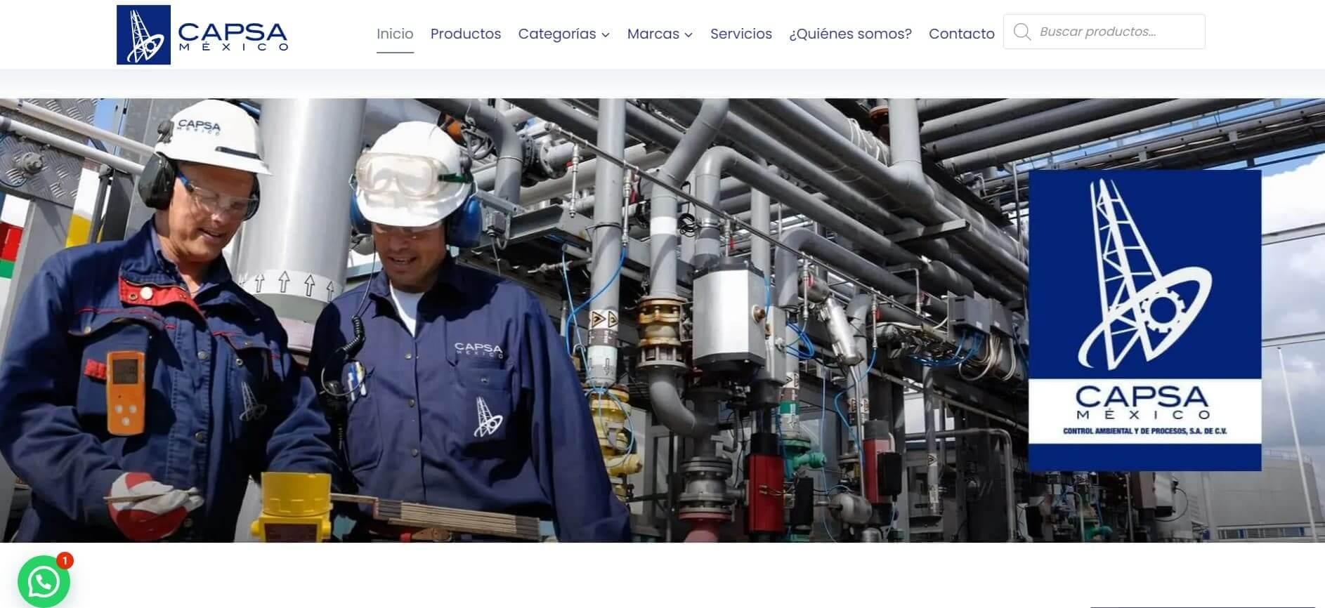 Páginas web, sitios web, SEO, diseño gráfico - Capsa México